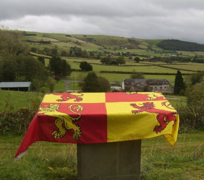 The colours of Owain Glyndwr displayed at Stalling Down